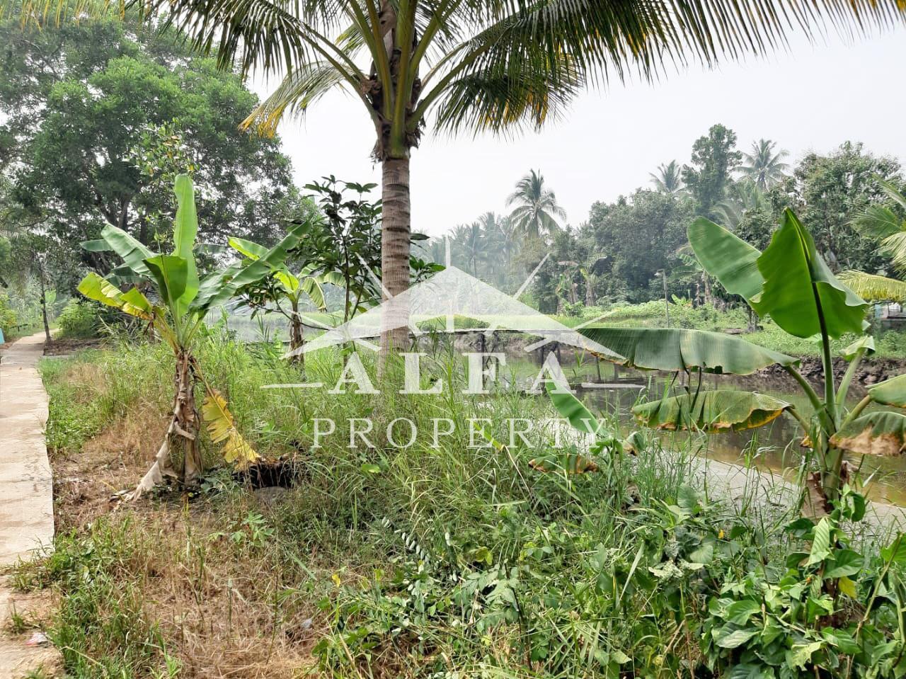 Tanah Pal 13 Kakap, Pontianak, Kalimantan Barat - 3