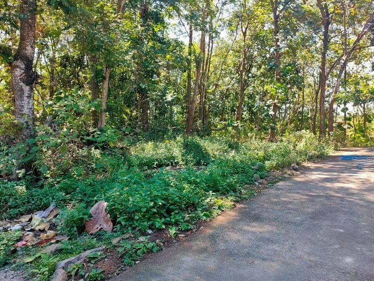 Tanah Idaman Kedawung Sragen - 5